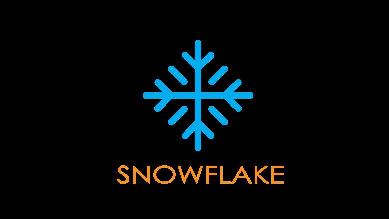 Airvuisa Snowflake